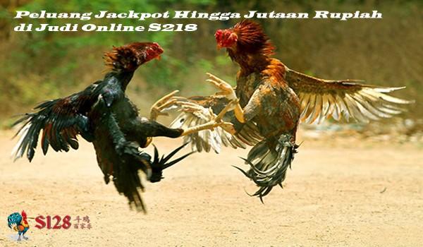 Peluang Jackpot Hingga Jutaan Rupiah di Judi Online S218